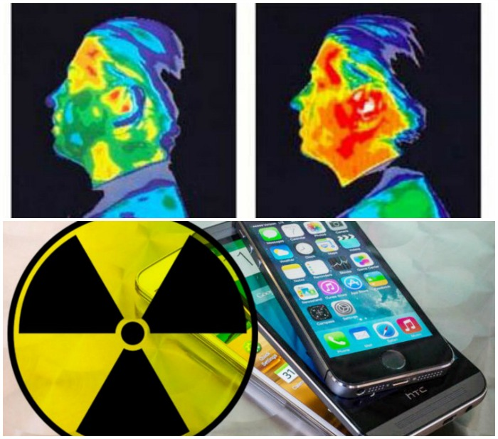 California Court Orders Environmental Health Organization To Disclose Cell Phone Health Risks