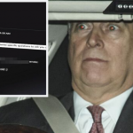 Leaked Emails Reveal Prince Andrew Knew About Victim He Denied Meeting